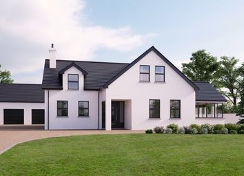 Thumbnail 4 bedroom detached house for sale in Gosford Road, Newry
