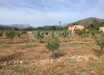Thumbnail Country house for sale in Port De Pollença, Port De Pollença, Pollença