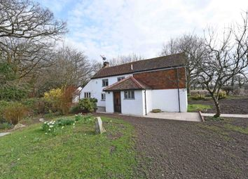 Thumbnail 2 bed detached house to rent in Alfold Road, Cranleigh