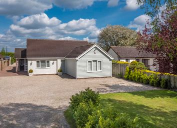 Thumbnail 4 bedroom detached bungalow for sale in Newton, Sudbury, Suffolk