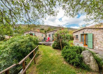 Thumbnail 7 bed villa for sale in Figari, Figari, France