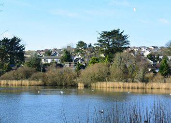Thumbnail 1 bed flat to rent in Swanpool Lake, Swanpool, Falmouth