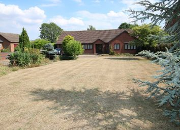 Thumbnail 3 bed detached bungalow for sale in London Road, Attleborough