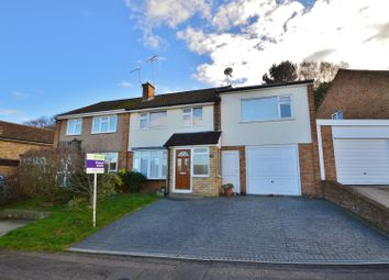Thumbnail 4 bedroom semi-detached house to rent in Primrose Drive, Ditton, Aylesford