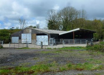 Thumbnail Property for sale in Ty Isaf, Cwmfelin Mynach, Whitland, Carmarthenshire