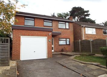 Thumbnail 4 bed property to rent in Oak Tree Road, Whitehill, Bordon