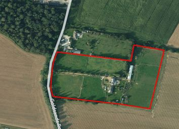 Thumbnail 7 bed equestrian property for sale in Goldsands Road, Southminster, Essex CM0, Essex,