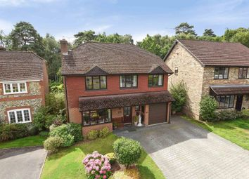 Thumbnail 4 bed detached house for sale in Barnett Lane, Lightwater