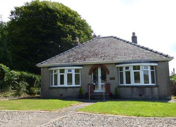 Thumbnail 2 bed detached bungalow to rent in Merlins Hill, Haverfordwest