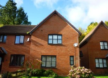 Thumbnail 3 bed semi-detached house to rent in Heron Way, Torquay