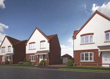 Thumbnail 4 bedroom detached house for sale in The Cashmere At Weavers Meadow, Great Cornard, Sudbury