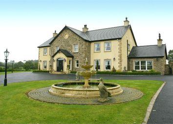 Thumbnail 5 bed detached house for sale in Carryduff Road, Lisburn, County Antrim