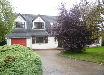 Thumbnail 4 bed detached house to rent in Birch Meadow, Newtownabbey
