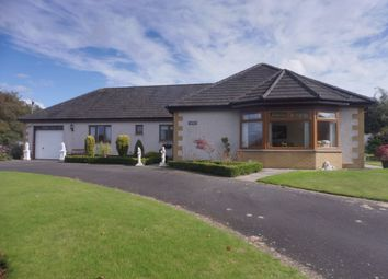 Thumbnail 4 bed detached bungalow for sale in Carlisle Road, Watchhill, Annan