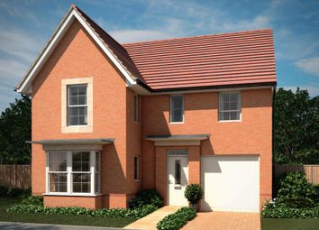 "Thumbnail 4 bedroom detached house for sale in ""Halstead"" at Park Hall Road, Mansfield Woodhouse, Mansfield"