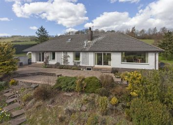 Thumbnail 4 bedroom bungalow for sale in Braes Of Newbigging, Fowlis Wester, Crieff