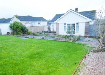 Thumbnail 3 bed bungalow to rent in Aller Close, Kingskerswell, Newton Abbot