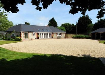 Thumbnail 4 bedroom bungalow for sale in South Creake, Fakenham, Norfolk