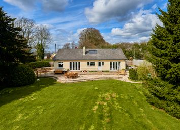 Thumbnail 4 bed detached bungalow for sale in Boyneswood Lane, Medstead, Hampshire