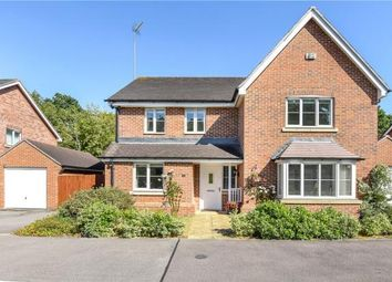 Thumbnail 4 bed detached house for sale in Butler Drive, Bracknell, Berkshire