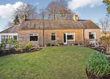 Thumbnail 3 bed cottage for sale in Burnside, Forfar