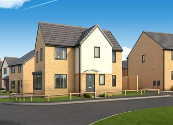 "Thumbnail 3 bedroom property for sale in ""The Sidbury At Roman Fields"" at Chamberlain Way, Peterborough"