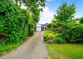 Thumbnail 3 bed bungalow for sale in Festival Avenue, Longfield