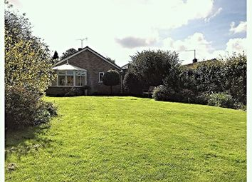 Thumbnail 2 bed detached bungalow for sale in Wetherby Close, Milborne St Andrew