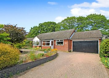 Thumbnail 3 bed detached bungalow for sale in Kingfisher Crescent, Reydon, Southwold, Suffolk