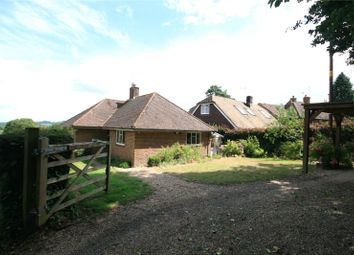 Thumbnail 3 bed detached bungalow for sale in School Lane, Lodsworth, Petworth, West Sussex