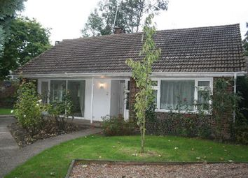 Thumbnail 2 bed bungalow to rent in Oaten Hill Place, Canterbury
