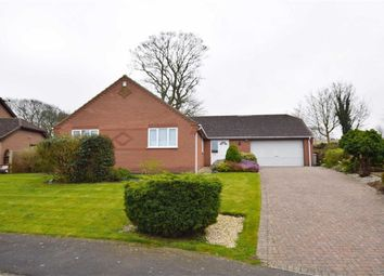 Thumbnail 4 bed bungalow for sale in St. James View, Louth