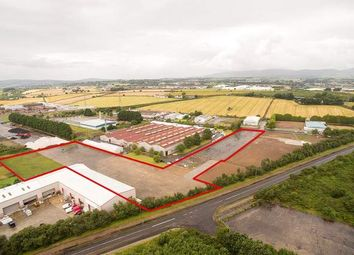 Thumbnail Warehouse to let in Carrakeel Drive, Maydown, Londonderry, County Londonderry