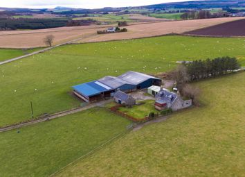 Thumbnail Farm for sale in Rothiemay, Huntly