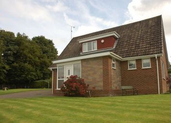 Thumbnail 3 bed bungalow to rent in High View, Ponteland, Newcastle Upon Tyne