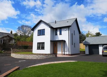 Thumbnail 3 bedroom detached house for sale in Govers Meadow, Colyton, Devon