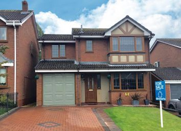 Thumbnail 4 bed property for sale in Brunlees Drive, Telford