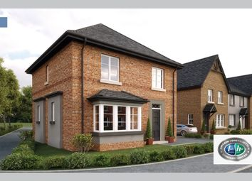 Thumbnail 3 bed detached house for sale in Ballyhampton Road, Kilwaughter, Larne