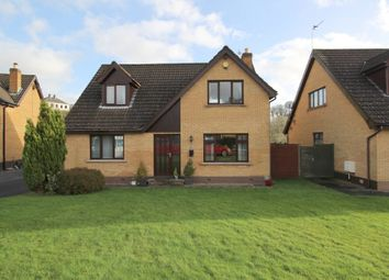 Thumbnail 4 bedroom detached house for sale in Old Mill Dale, Dundonald
