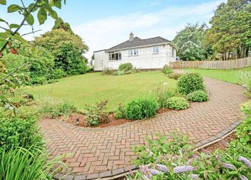 Thumbnail 4 bed bungalow for sale in Stoney Hill, Trewoon, St. Austell