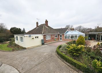 4 bed detached bungalow for sale in Victoria Hill, Eye IP23