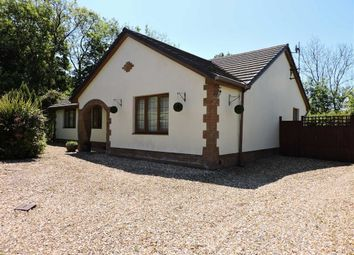 Thumbnail 3 bed detached bungalow for sale in Pantglas, Croesyceiliog, Carmarthen