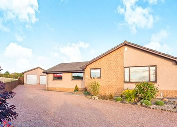 Thumbnail 4 bed bungalow to rent in Mackie Gardens, Markinch, Glenrothes