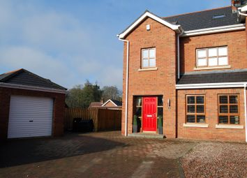 Thumbnail 4 bed semi-detached house for sale in Penworth Green, Lisburn