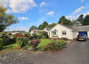 Thumbnail 2 bed bungalow for sale in Oakdale Avenue, Swimbridge, Barnstaple