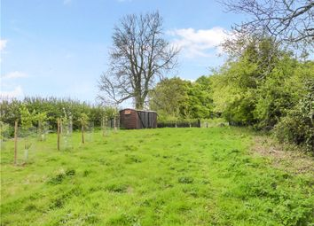 Thumbnail Land for sale in Woolminstone, Crewkerne, Somerset