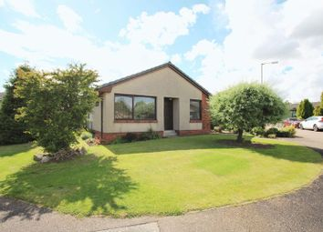 Thumbnail 3 bed detached bungalow for sale in Blairs Croft, Letham, Forfar