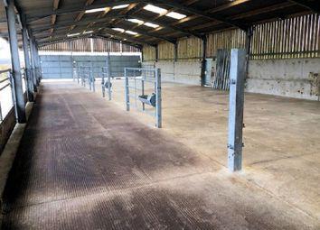 Thumbnail Land for sale in Livestock Barn, Llwynhaf, Llanddarog Road, Carmarthen, Carmarthenshire.
