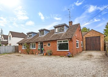 Thumbnail 6 bedroom detached bungalow for sale in Old Odiham Road, Shalden Parish, Alton, Hampshire
