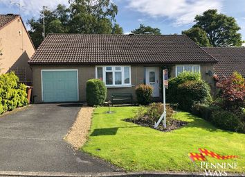 Thumbnail 2 bedroom semi-detached bungalow for sale in Meadow Grange, Haltwhistle, Northumberland